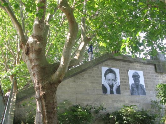 Passerelle et arbres_DH